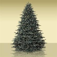 artificial christmas trees on sale consumers pursue balsam hill artificial christmas trees on clearance