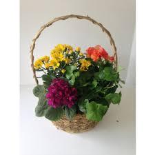 orange park florist orange park florist and gifts send the freshest flowers to