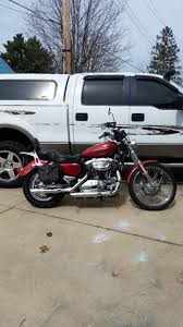 harley davidson sportster 1200 custom motorcycles for sale