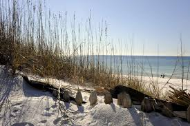 seacrest beach vacation rental gulf front bungalow relax 30a