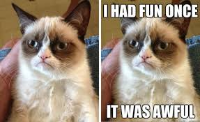 Original Grumpy Cat Meme - grumpy cat wins 710 000 in copyright infringement lawsuit