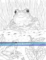 coloring pages lost u0026c