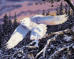 compare prices on snowy owl decorations online shopping buy low