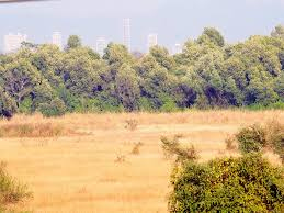 land encroached in jammu over 1 5 thousand acre land encroached