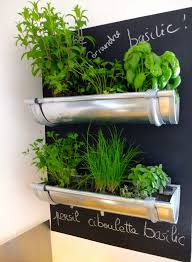 kitchen gardening ideas 15 phenomenal indoor herb gardens