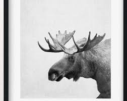 Moose Head Decor White Moose Head Etsy