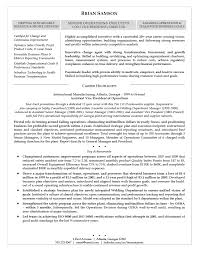 Sample Resume For A Driver Resume Sample Ladybug Design