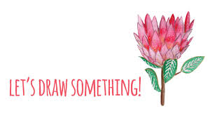 Protea Flower Let U0027s Draw Something Queen Protea Flower Time Lapsed