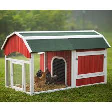 chicken coop reviews analize before making making decisions