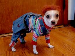 chucky costume 8 dogs dressed as your favorite horror characters bloody