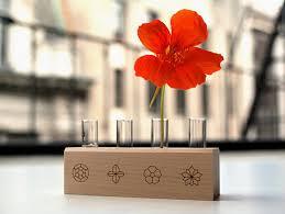 stunning indoor garden kit images decoration design ideas