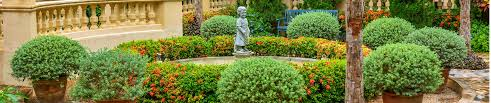 Valley Green Landscaping by Forever Green Landscaping In Charleston Sc Now Hiring