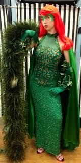 Poison Ivy Halloween Costume Poison Ivy Costume Batman Villain Comic Book Cosplay Dallas