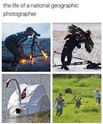 Photographer Meme - the life of a national geographic photographer meme xyz