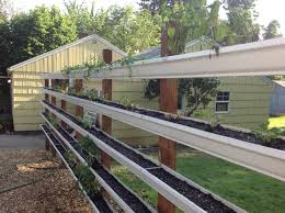 gutter garden live fence we built and filled with small edibles