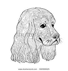 coloring book spaniel head adults ethnic decorative
