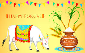 Pongal Invitation Cards Pin By Morehdwallpapers On Happy Pongal Hd Wallpaper Pinterest