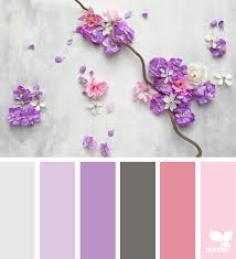 pink color combination autumn spectrum flora seeds and design seeds