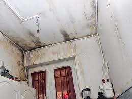 probleme moisissure chambre combattre l odeur d humidité dans la maison