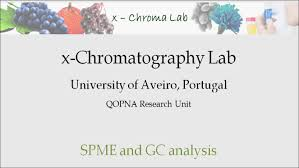 spme and gc analysis of wine volatile components youtube