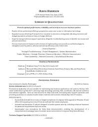 summaries for resumes it professional resume sample monster com