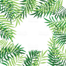 palm tree leaves border 3 stock vector more images of backdrop