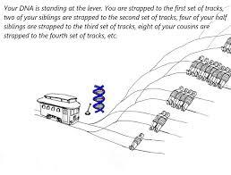 Meme Selfish Gene - selfish gene trolley problem by thomas lazo trolley problem memes