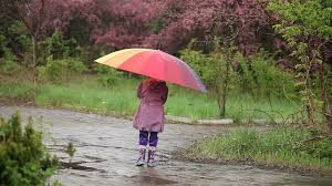 wet little boy comes to cute under umbrella during the rain