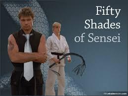Meme Karate - fifty shades of sensei meme