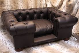 Leather Sofa And Dogs Leather Sofa Bed Okaycreations Net