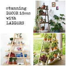 Home Decoration With Plants by Gorgeous Ways To Decorate Your Home With Plants