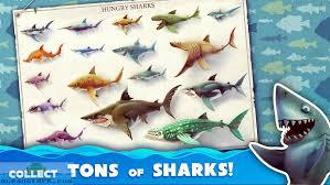 shark apk hungry shark world mod apk free