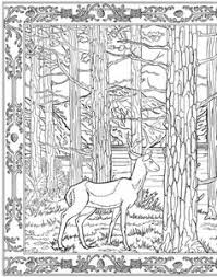 pin lena colouring pages