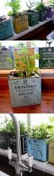 window herb gardens 10 cheap diy indoor herb containers home design and interior
