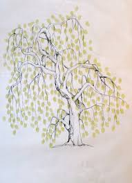 illustration of a tree yahoo image search results treeeezzz