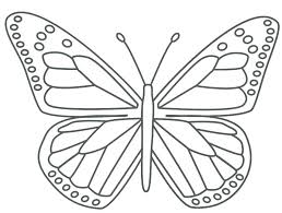 detailed butterfly coloring pages for adults printable butterfly coloring pages butterfly coloring pages