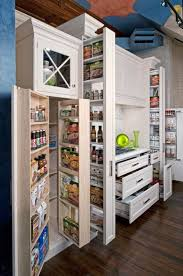 Kitchen Storage Cabinets Pantry Best 25 Built In Pantry Ideas On Pinterest Traditional Pantry