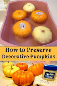 How To Make Halloween Pumpkins Last Longer - make your decorative gourds and pumpkins last all season long