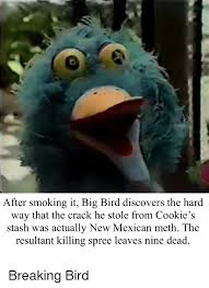 Mexican Maid Meme - 25 best memes about bertstrips and mexican bertstrips and