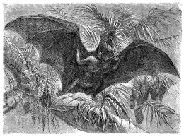 antique images free halloween clip art vintage vampire bat in