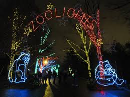 Zoo Lights Pictures by The Schumin Web Zoolights