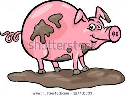 pig mud stock images royalty free images u0026 vectors shutterstock