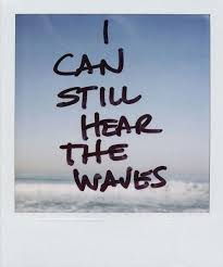 Surfing Quotes Surfing Meme Pinterest
