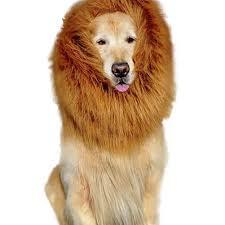 popular lion halloween costume dog buy cheap lion halloween