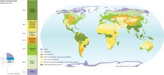 Biome Map Coloring Central Korean Deciduous Forest Simple Maps Of Forests Maps Of
