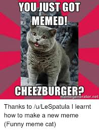 Cheezburger Meme Builder - 25 best memes about funny meme cat funny meme cat memes
