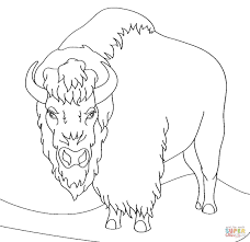 angry bison coloring page free printable coloring pages