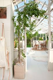 a greenhouse makeover with u0027the frame u0027 emily henderson