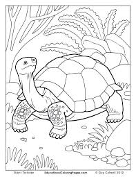 fiery furnace coloring page 687 best bible story coloring pages images on pinterest coloring
