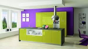 cuisine vert anis acheter ou changer de cuisine le sagne cuisines
